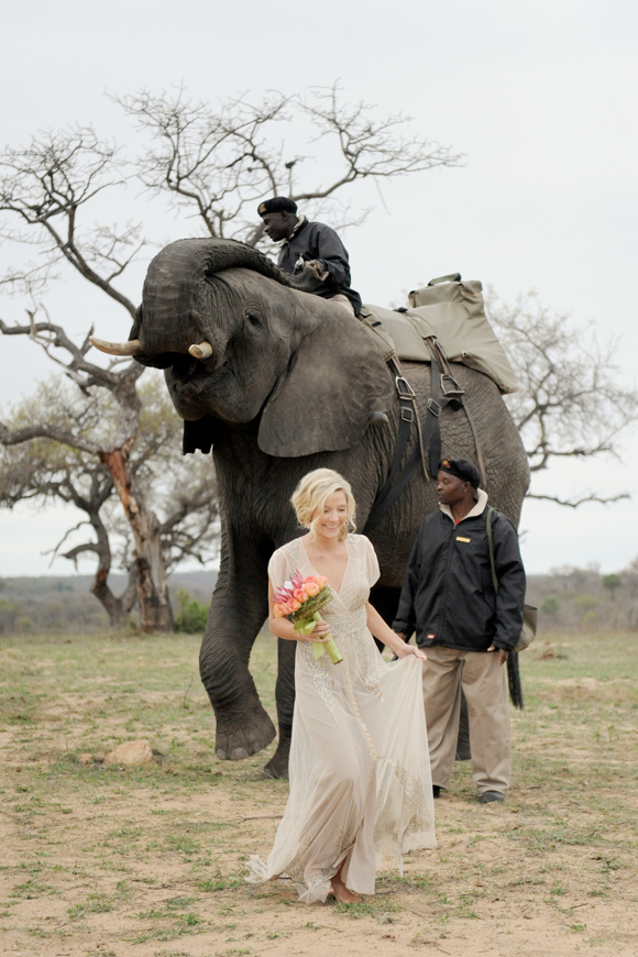 South-Africa-intimate-wedding-elephants-SarahMariePhotos-19