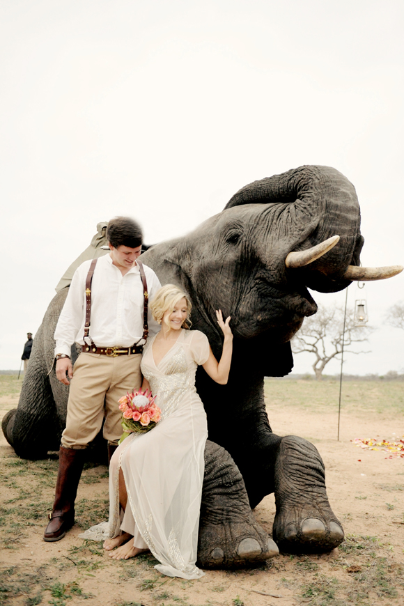 South-Africa-intimate-wedding-elephants-SarahMariePhotos-26