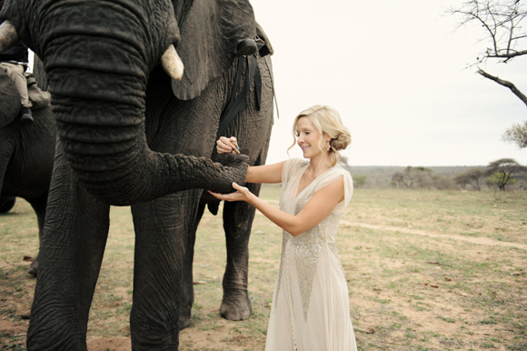 South-Africa-intimate-wedding-elephants-SarahMariePhotos-32