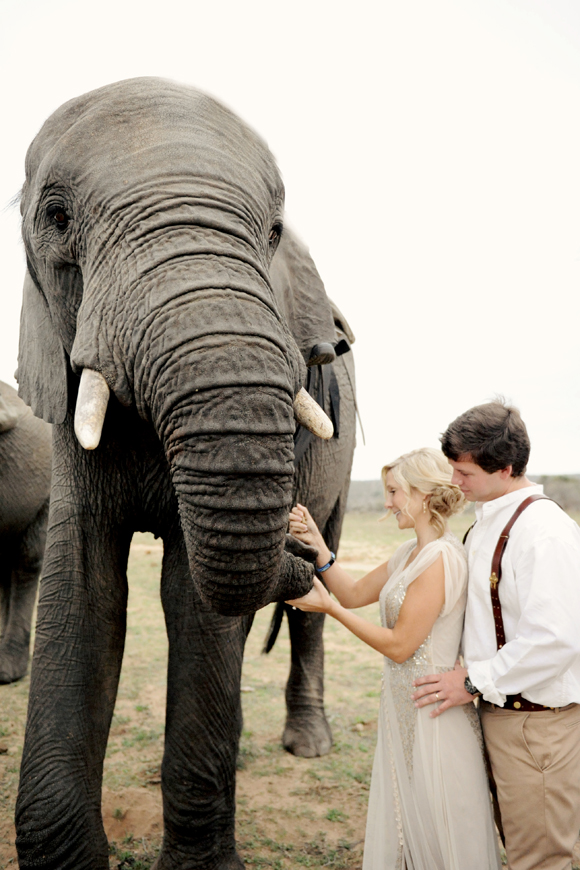 South-Africa-intimate-wedding-elephants-SarahMariePhotos-33